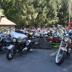 Harley Davidsons at Blackthornes Resort